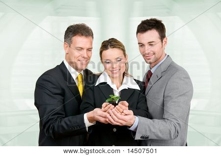 Business team holding a fresh new plant on palm in modern office. Symbol of green, new and growing business
