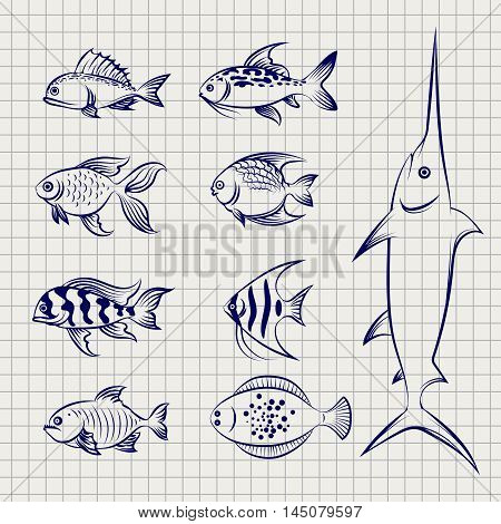 Hand drawn fish. Sketch fish on the notebook page vector icons