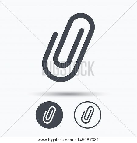 Attachment icon. Paper clip symbol. Circle buttons with flat web icon on white background. Vector