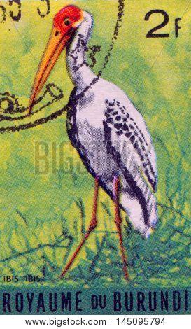 BURUNDI - CIRCA 1960s: A stamp printed in Burundi shows a Ibis ibis, circa 1960s