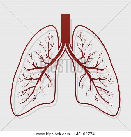 Human Lung anatomy illustration . Illness respiratory cancer graphics. Vector