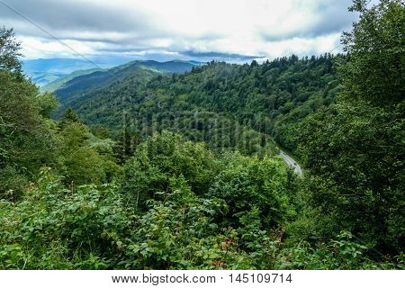 View from Great Smoky Mountains