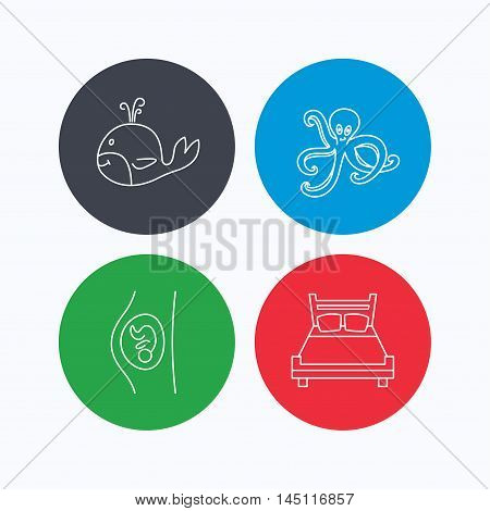 Whale, octopus and double bed  icons. Pregnancy linear sign. Linear icons on colored buttons. Flat web symbols. Vector