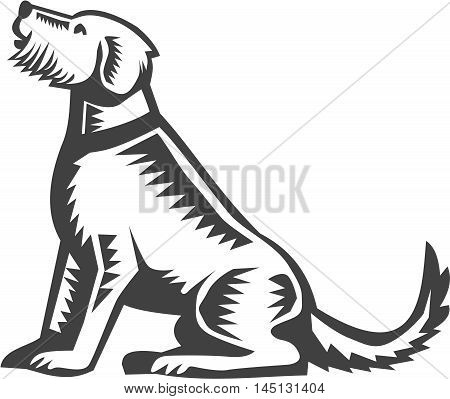 Illustration of a welsh terrier dog sitting looking up viewed from side set on isolated white background done in retro woodcut style