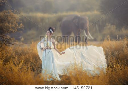 Bride and groom wedding portrait outdoors newlyweds loving couple at field marriage bridal flowers Beautiful young woman in evening dress of soft light and elephant background Thailand