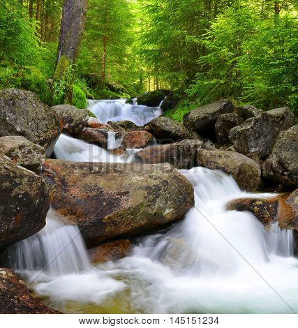 Waterfall on creek in mountain forest.