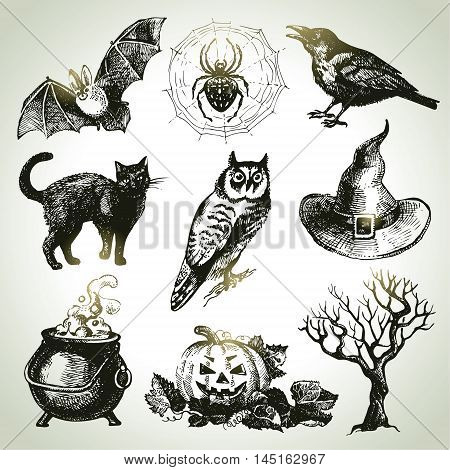 Hand drawn halloween holiday sketch vector set