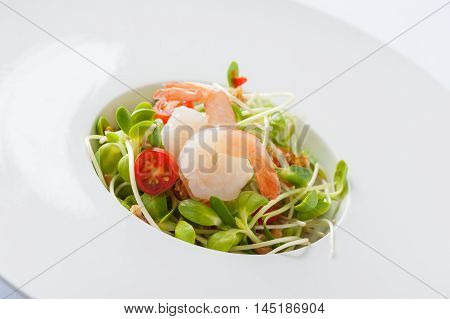 Modern style sunflower sprout salad with shrimp in ceramic dish