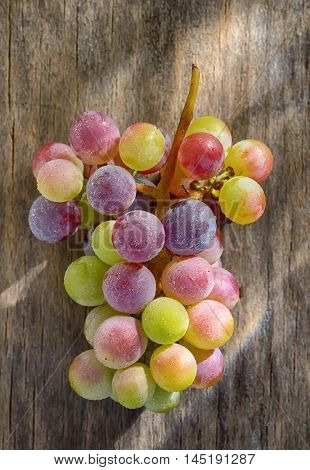 Bunch of unripe wine grapes on old table wood poster