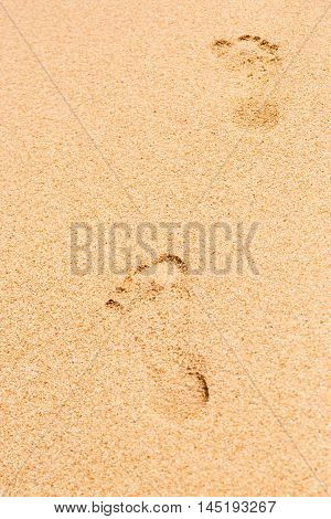 Footprints in the sand vertical relaxation, repose, nature, walk, outdoor