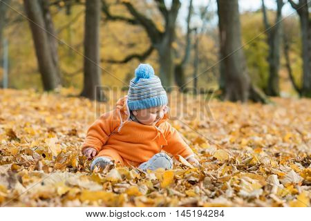 Toddler baby playing in autumn park.