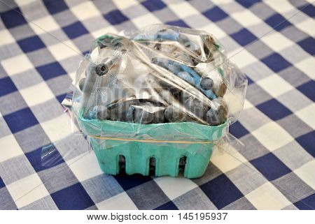 Fresh Blueberries in a Container with a Summer Table Cloth Background