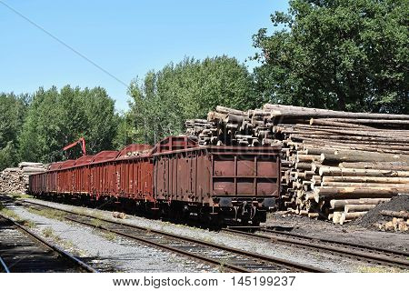 Stock of wooden logs at train station