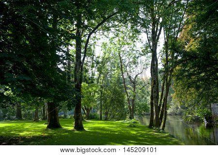 Beautiful view on a sunny park on autumn season
