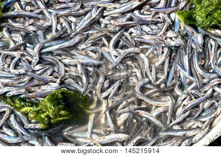 Anchovies in market in Naples macro picture