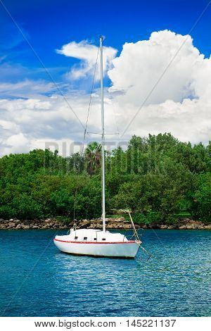 sailfish yacht near scenic the green island