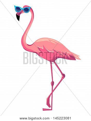 flamingo vector illustration, bird, pink flamingo in glasses