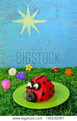 Spring or summer food theme includes a red and black ladybug cupcake artificial grass and flowers plus the sky and sun drawn on a chalkboard.