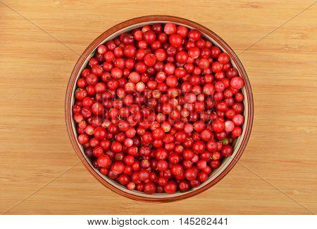Lingonberry (Vaccinium vitis-idaea) in dish on white background