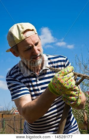 A Man With A Rake  In The Garden