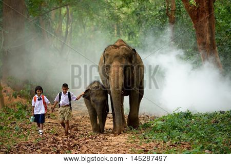 brother and sister go back home after learning by walking with their elephant