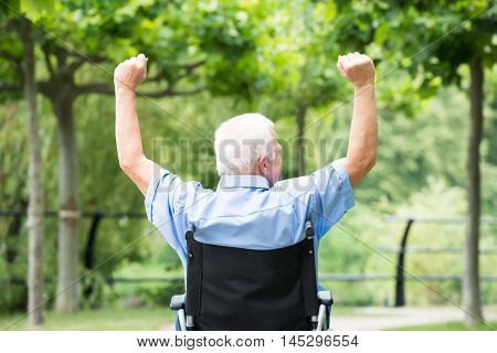 Rear View Senior Man On Wheelchair Raising His Arm In Park