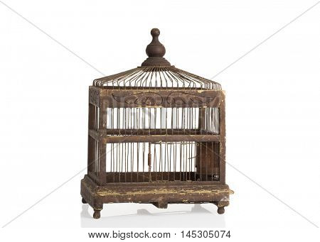 Antique Edwardian birdcage on a white background