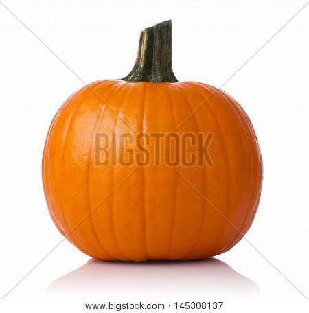 Close up of a pumpkin isolated on white background