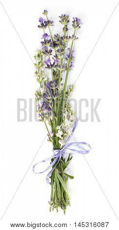 Bunch of white, pink and violet lavender with ribbon varieties