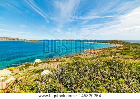 view of beautiful Capo Coda Cavallo Sardinia