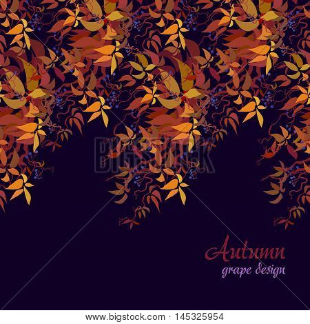 Autumn grape vine border design. Wilde grape with red orange leaves and berries. Horizontal design on dark background. Colorful autumn or fall banner template. Vector illustration stock vector.