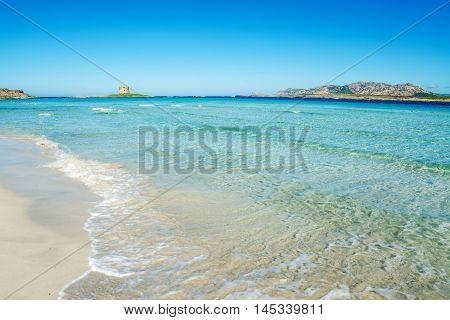 a colorful shore in Stintino in Sardinia