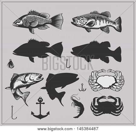 Fishing set. Fish, seafood and Fishing equipment.