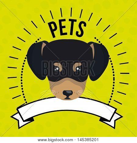dog pet mascot icon vector illustration icon
