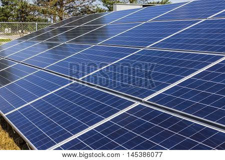 Solar Panel Farm. Corn Fields are Being Converted into Green Energy Areas Using Photovoltaic Cells X