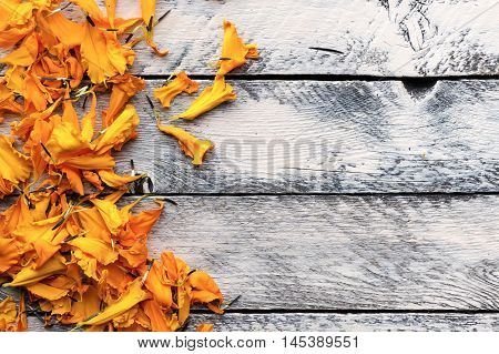 Autumn background with yellow orange petals on painted wooden background