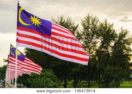 Malaysian national flags known as Jalur Gemilang.