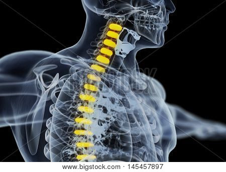 Human spine discs, xray image. 3d illustration