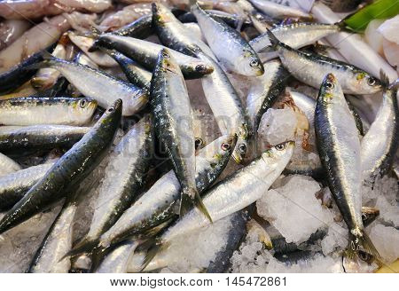 Assortment Of Fresh Sardines