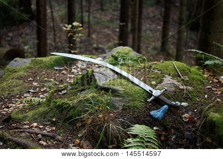 Cold steel arms, Sabre is lying on mossy cliff