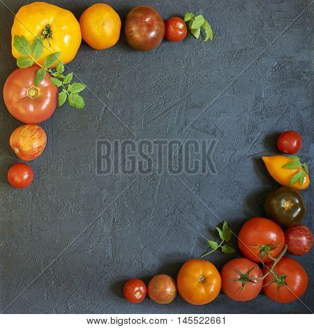 Black concrete background with fresh multicolored tomatoes
