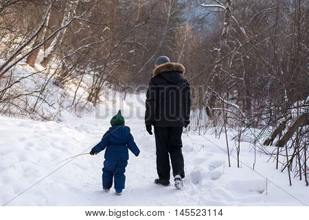 Father and child walking in a winter forest.