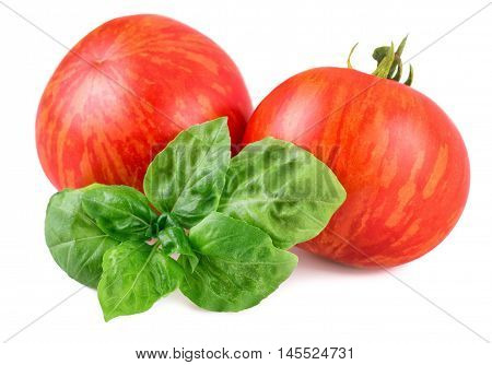 Tomatoes striped Tigerella cultivar isolated on white
