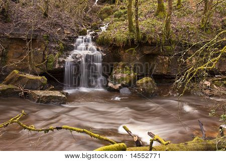 Calderglen Waterfall
