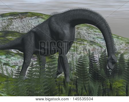 Brachiosaurus dinosaur eating fern on the ground - 3D render