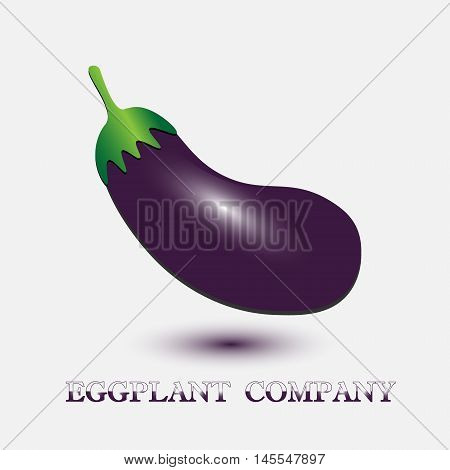 eggplant company on white Large eggplant with glare and shadow on a white background as a company logo or design