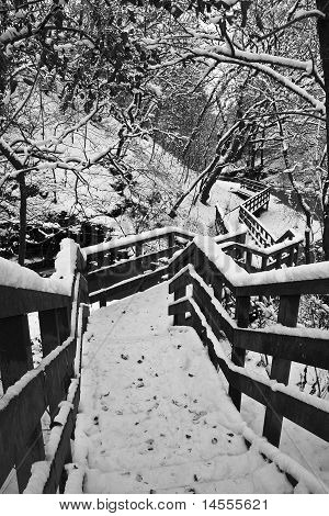 Strathaven Castle Steps