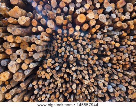 fire wood, logs, wood, wood curved, wood cut, wood grain texture, wood pile