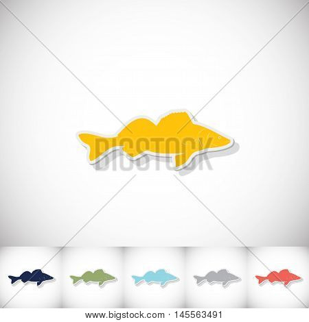 Fish zander. Flat sticker with shadow on white background. Vector illustration