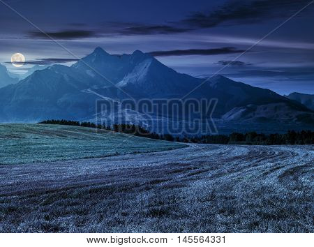 Tatra mountains in evening haze behind the forest and rural field at night in full moon light